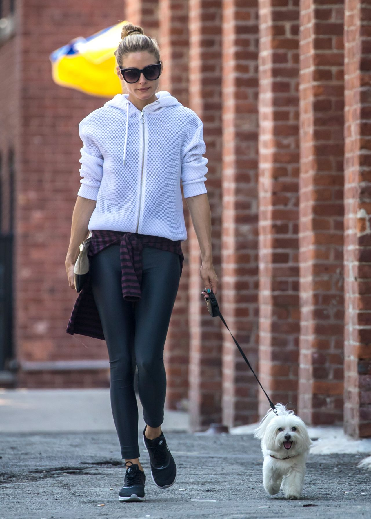 olivia-palermo-walking-her-dog-in-brooklyn-new-york-city-7-18-2016-6